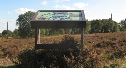 lectern-chasewater-heath-480x261