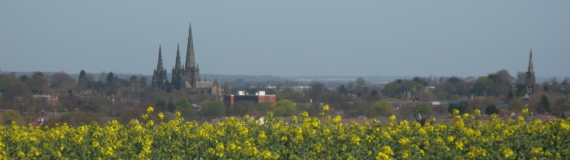 lichfield-from-pipe-hill-800x225