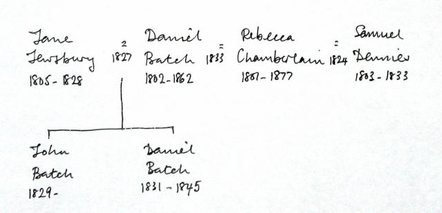 rebecca-chamberlain-tree-640x309