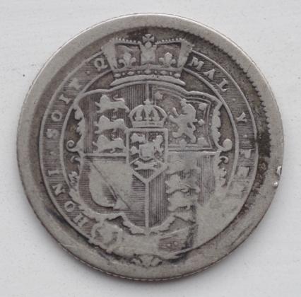 IMGP6601 (800x790)