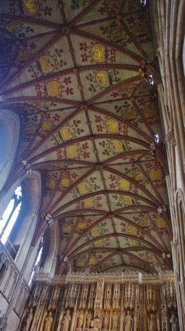 ceiling 2 (268x480)