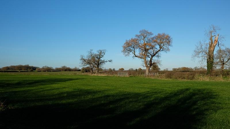 cheshire fields 171201 s