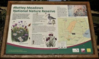 Mottey Meadows NNR lectern s