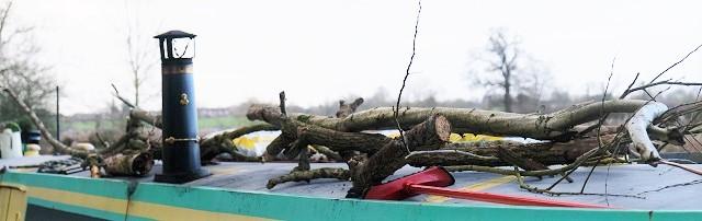 fwood roof
