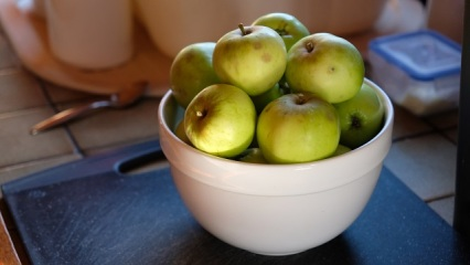 Foraged apples - good for cooking.
